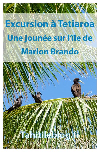 Excursion à Tetiaroa : l'île aux oiseaux, repas sur la plage, baignade dans le lagon. Hélas, le séjour à l'hôtel The Brando n'était pas compris!