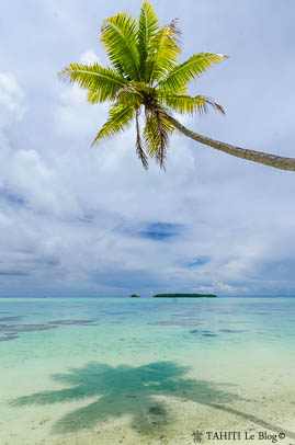 Lagon de l'atoll de Tetiaroa en Polynésie