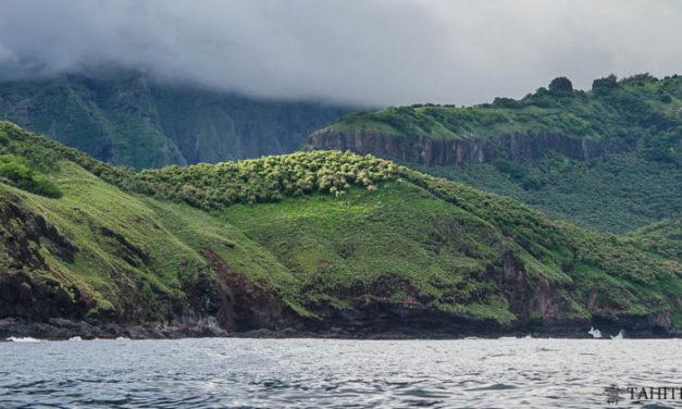 Voyage aux îles Marquises: découverte de Nuku Hiva