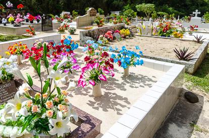 Tombe fleurie au cimetière de l'Uranie