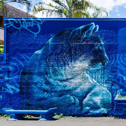Street art et graffiti à Tahiti : Kalouf