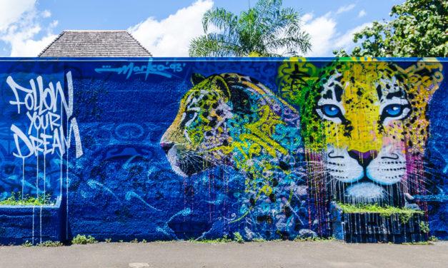 Street Art et graffiti à Tahiti : le festival Ono'u
