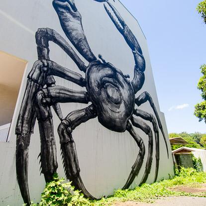 Street art et graffiti à Tahiti : Roa