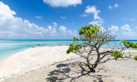 Atoll de Tikehau : notre weekend au paradis