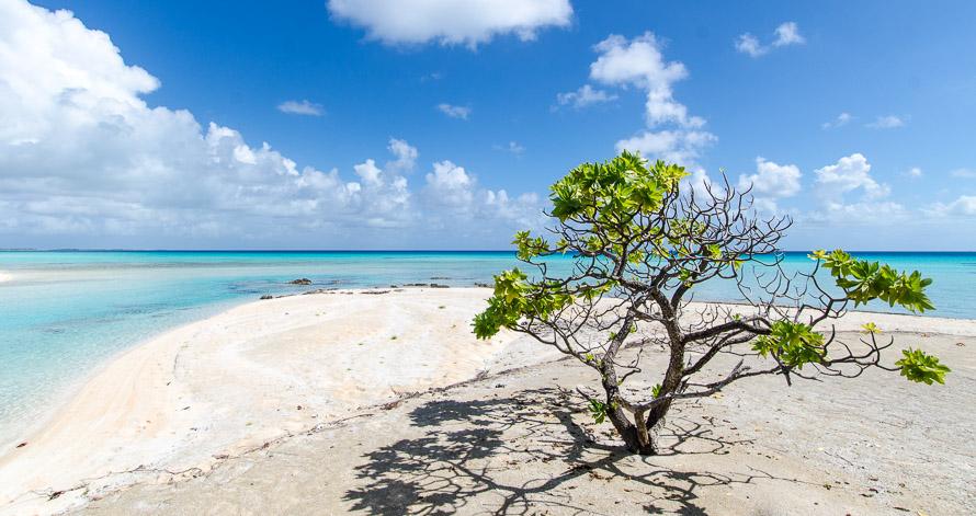 Tikehau en Polynésie: atoll au paradis