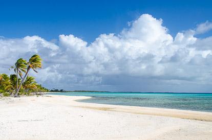 Tikehau: plage paradisiaque