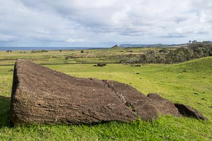 Moai en chemin sur l'île de Pâques