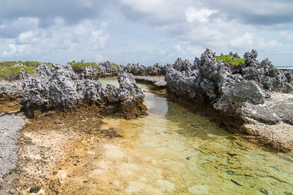 Rangiroa : l'île aux récifs
